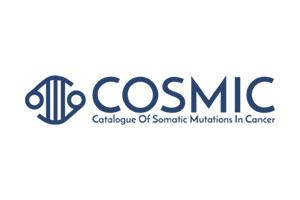 COSMIC_logo_300x200
